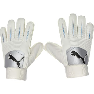 Puma PowerCat 4.10 Grip Goalkeeper Gloves